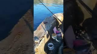 Морская рыбалка осень 2020