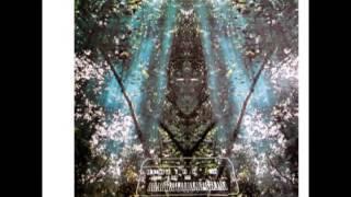 Ariel kalma - Message 18.10.77