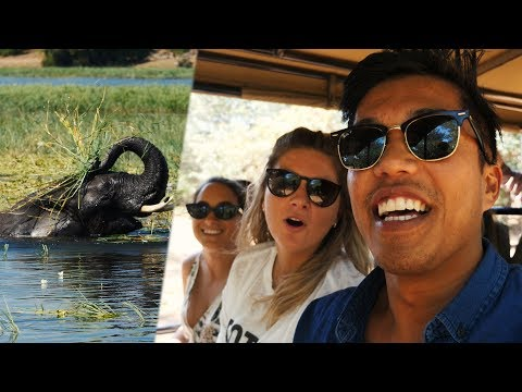 BOTSWANA'S CHOBE NATIONAL PARK!!! (218 | South Africa Travel VLOG)