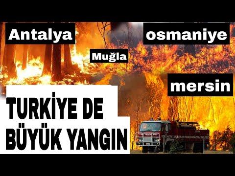 Antalya Yangın, Osmaniye Yangın, Mersin Yangın, Manavgat Yangın, Muğla Yangın,Marmaris yangın  ???