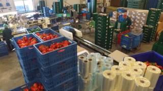 bedrijfs-square-crops