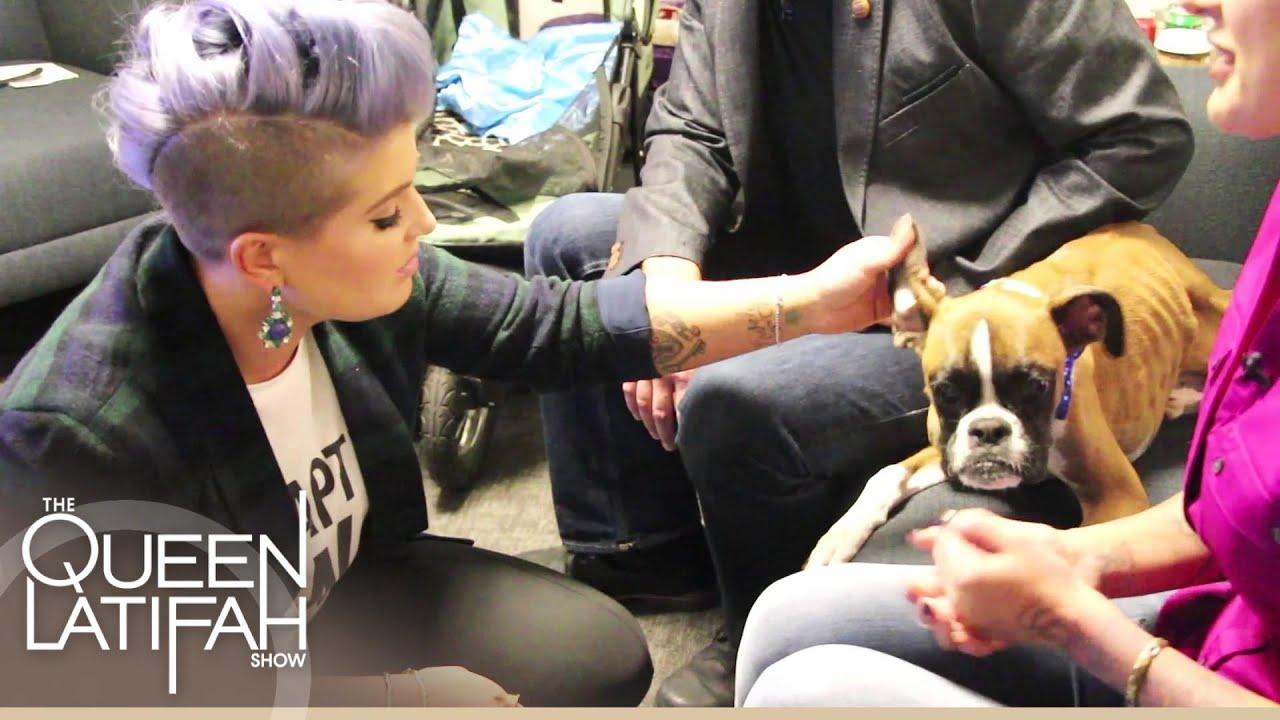 Kelly Osbourne Visits Duncan The Dog   The Queen Latifah Show