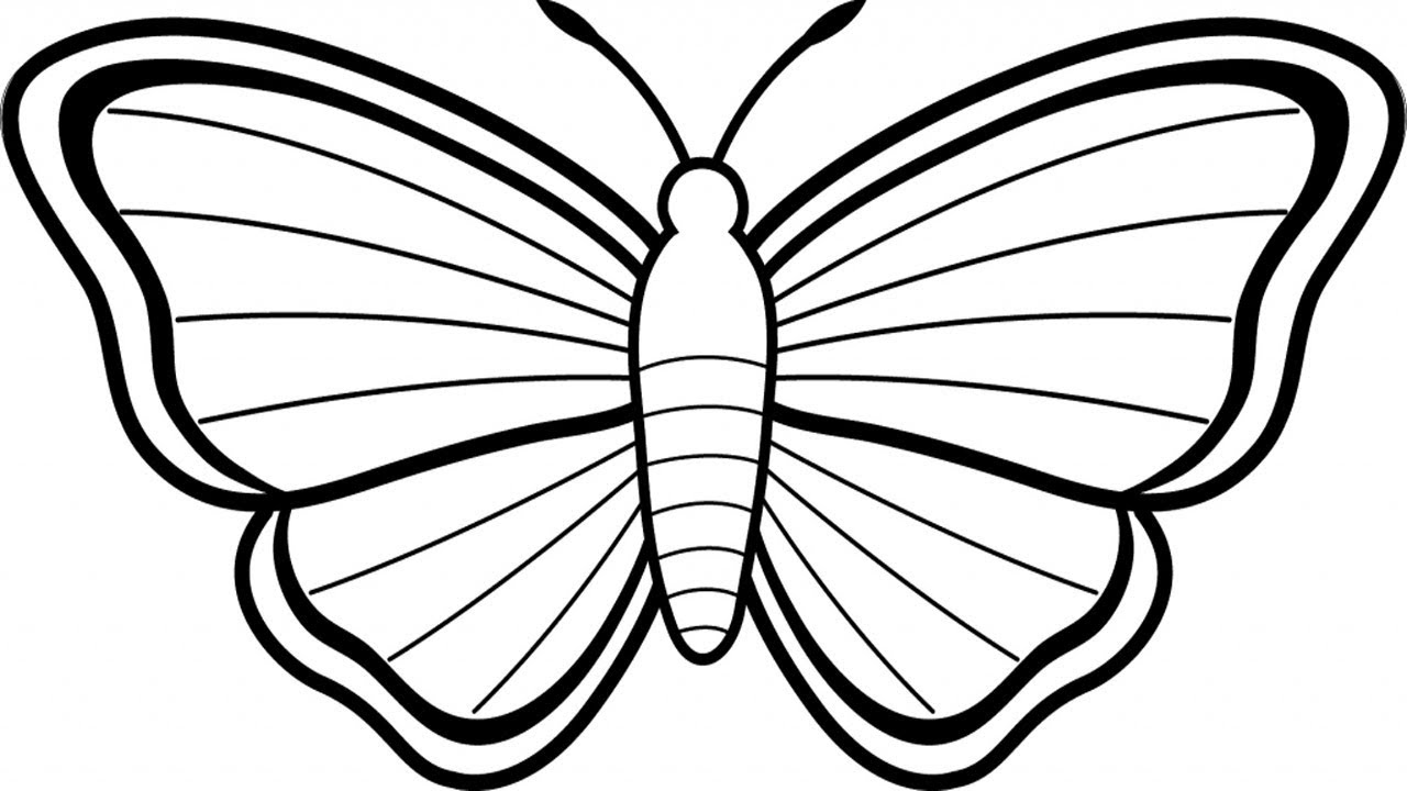 Coloring pages how to draw a butterfly butterfly drawings in pencil draw a butterfly