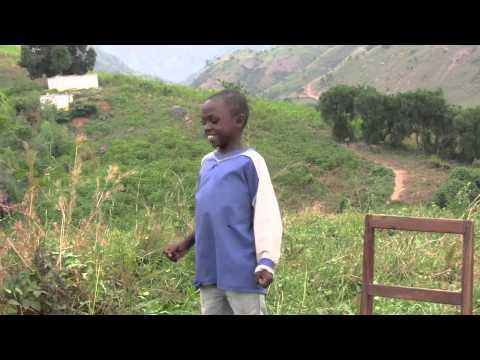 The Future of the Democratic Republic of the Congo