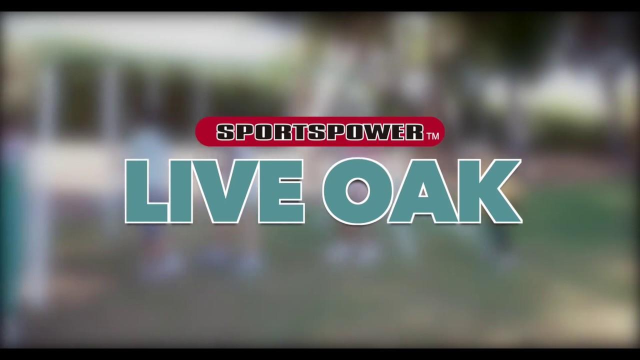 Live Oak Metal Swing And Slide Set By Sportspower Youtube