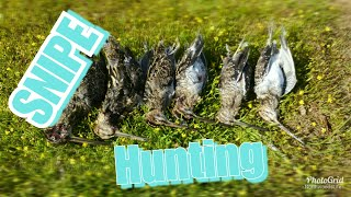 SNIPE Hunting | How to [2017]