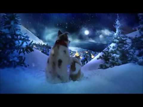 Chris Norman Christmas Song mp3 letöltés