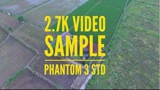 DJI Phantom 3 Standard - 2.7K Video Test (Sample Video)