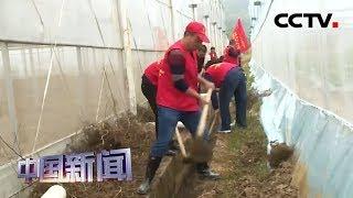 [中国新闻] 江西:清淤疏浚保灌溉 助力抗旱保生产 | CCTV中文国际