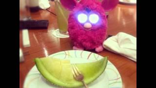 Repeat youtube video รายงานพิเศษ Furby Fever ของเล่นคนรวยตัวละเหยียบหมื่น (ทอย)