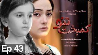 Kambakht Tanno - Episode 43 | Aplus - Best Pakistani Dramas