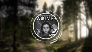 Selena Gomez x Marshmello - Wolves (Damian Kuru Remix)