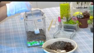 How To Make Miniature Garden In Sealed Container
