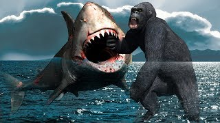 Gorilla Vs Shark Real Fight | Fighting Action Video for Kids