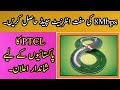 PTCL Free DSL Upgrade Offer 2019 8Mbps in the Price of 6Mbps