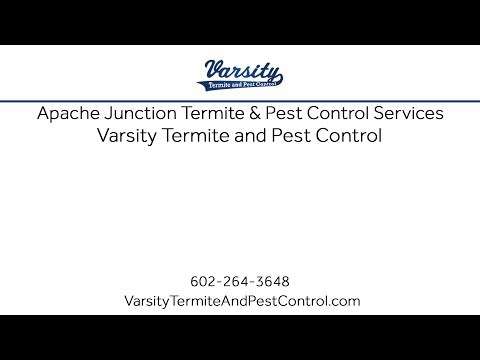 Apache Junction Termite & Pest Control Services With Varsity