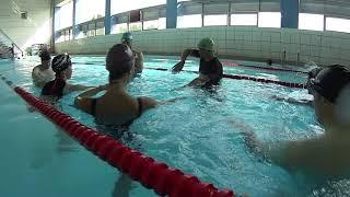 Отчёт о  тренинге по плаванию кролем. Плавать просто.  Москва 8 - 9 сентября 2018 года