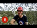 Cruising Melbourne's 80-Foot Tree Canopies with a Chainsaw