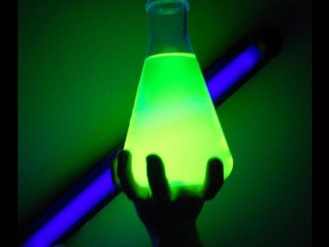 The Secret History of Bioluminescence   Hakai Magazine
