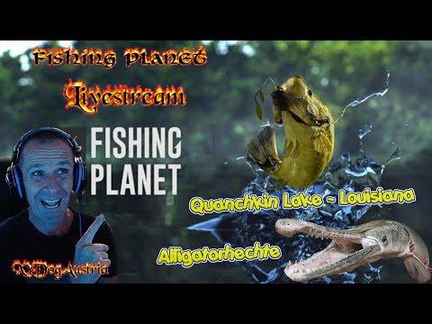 fishing-planet-**quanchkin-lake-louisiana-auf-aligatorhecht-**-livestream-gameplay-+-facecam-1080p30