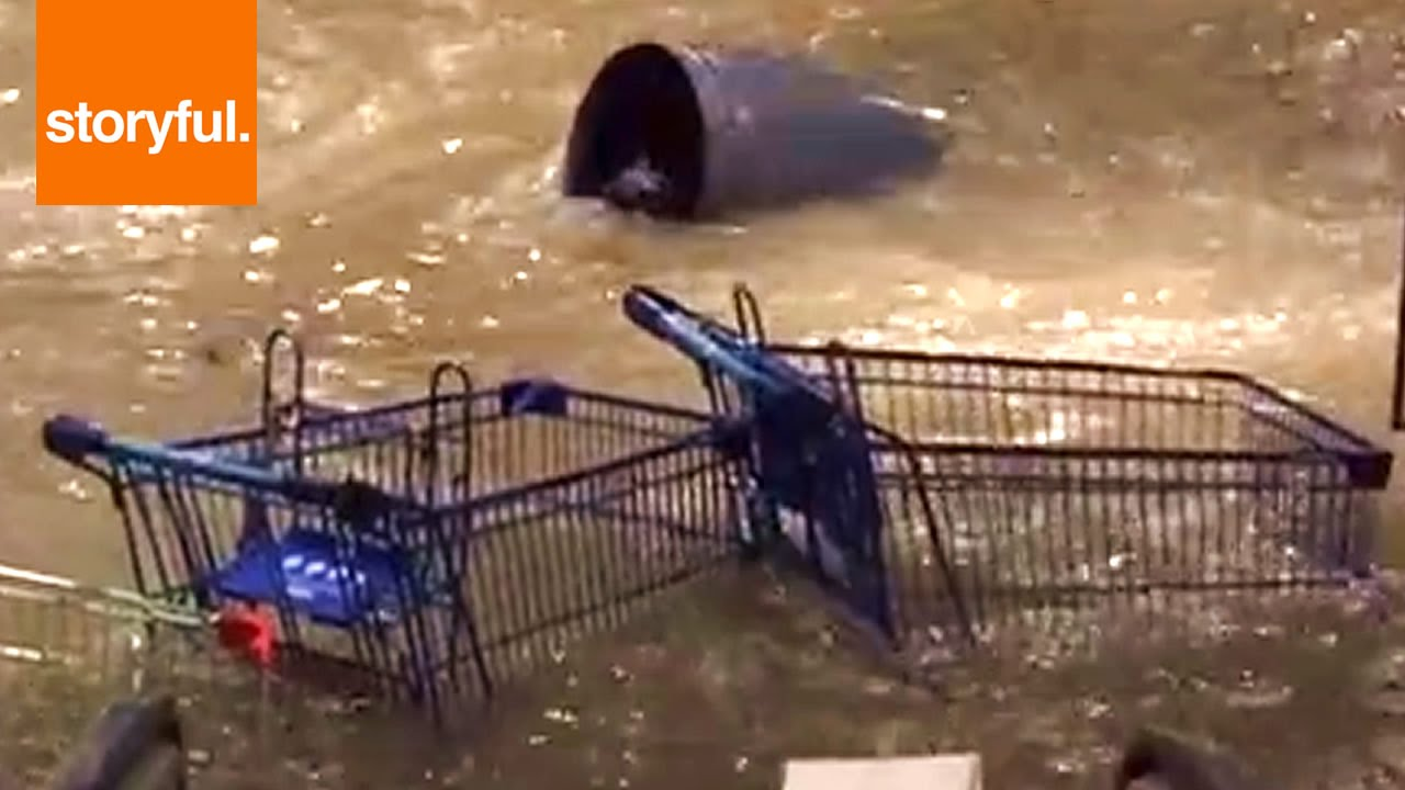 Download Crazy Flash Storm Floods Mall Entrance (Storyful, Crazy Weather)