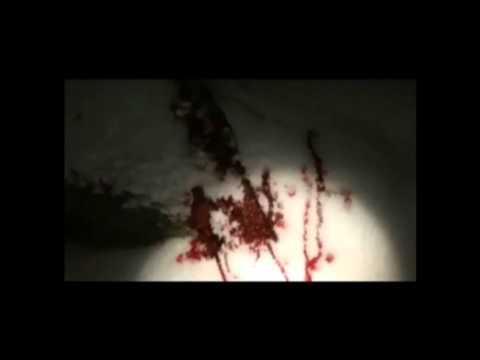 Minus 18 Trailer