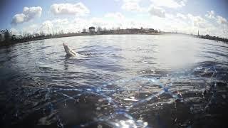 Рыбалка на озере Кагальное Ловим подлещика