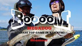大型プラグに水面炸裂!メガドッグを使ったシーバストップウォーターゲームin中海【Megabass】