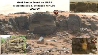 Gold Beetle Found on MARS - Multi Statues & Evidence For Life (Part 2)