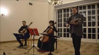 Arto Järvelä - Nyckelharpa & Cello Guitar Duet Duo Vitare - Ecossaise