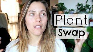 Houseplant Swap Haul! Plant Swap Experience!