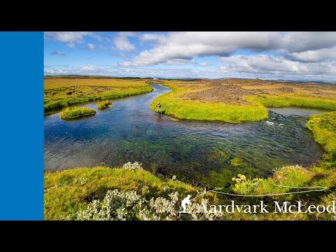 Trout fishing on the Minnivallalaekur, Iceland
