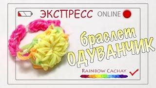 Браслет Одуванчик. Плетение из резинок rainbow loom bands. Трансляция канала Rainbow cachay!