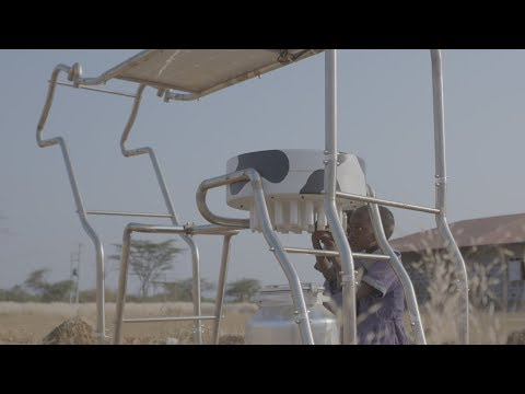 [YOLK] Solar Cow Project helps to stop child labor in Africa