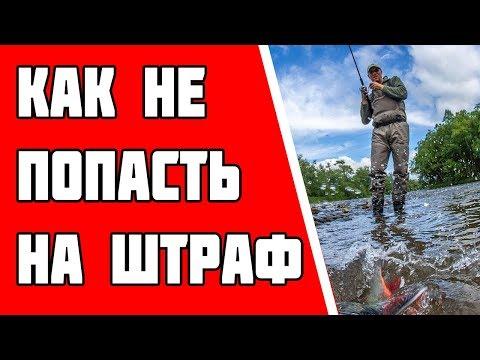 Как не расстаться с деньгами на рыбалке?! Новые Правила Рыболовства. Закон о рыбалке 2019