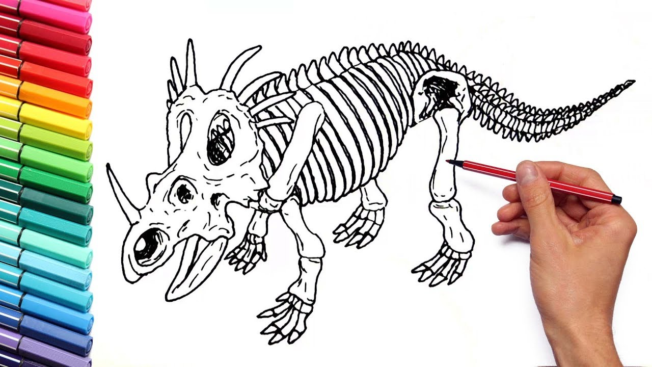 drawing and coloring dinosaur styracosaurus skeleton dinosaur