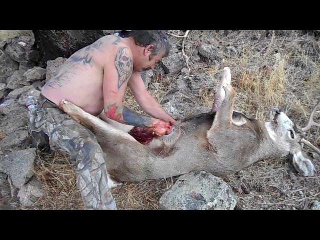 Hunting Mahoney Creek 2015