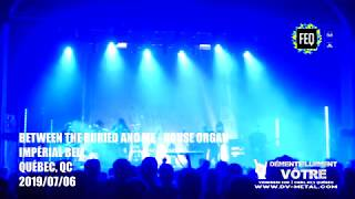 Between the Buried and Me - House Organ LIVE Festival d'été de Québec 2019 07 06