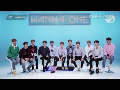 Wanna One 1st Anniversary