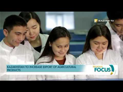 Kazakhstan to increase export of agricultural products