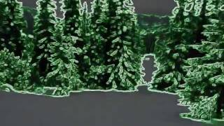 Snowboard Chopok Slovakia - Fabulous forest run with a night vision device at midnight