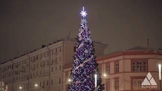 Волшебная Рождественская Елка. Ёлкин Дом |Magical Christmas Tree. Elkin Dom