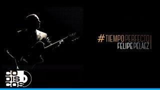 Felipe Peláez & Manuel Julián - Perdóname (Tiempo Perfecto)
