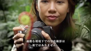 ナショナルジオグラフィックが捉えた有村架純、沖縄での過酷な大冒険 - ...