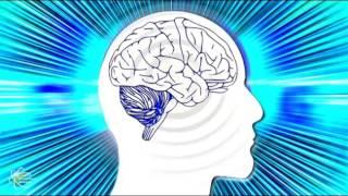 6 принципов мышления инвестора: как развить в себе мышление успешного человека