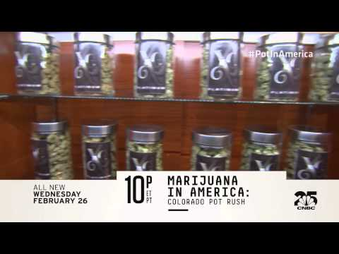 Marijuana in America: Colorado Pot Rush