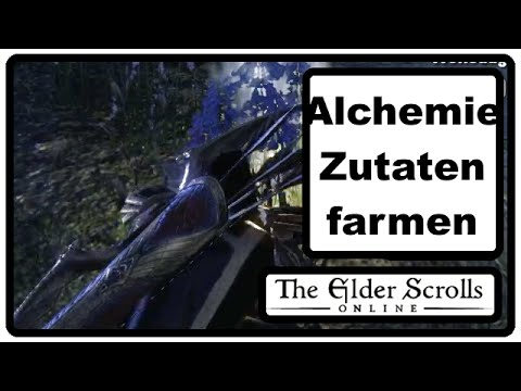 how to train alchamey fast skyrim
