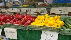 Farmers Market in Clermont Florida plus MORE!