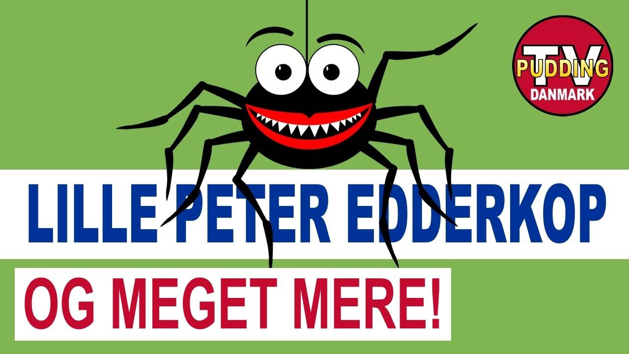 Lille Peter Edderkop og meget mere - Danske børnesange