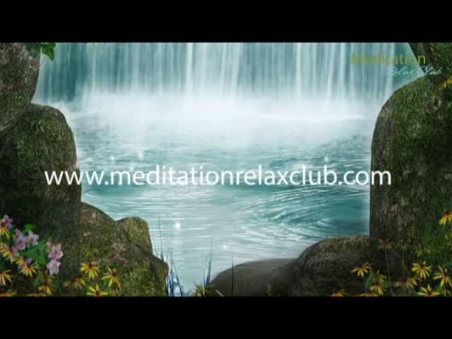 Soundscapes: Whale, Cave & Bird Sounds of Nature Non Stop Music for Relaxation & Wellness